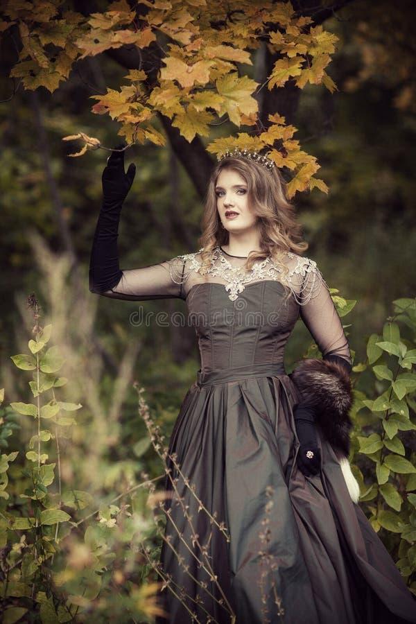 Fee in een fabelachtig de herfstbos royalty-vrije stock foto's