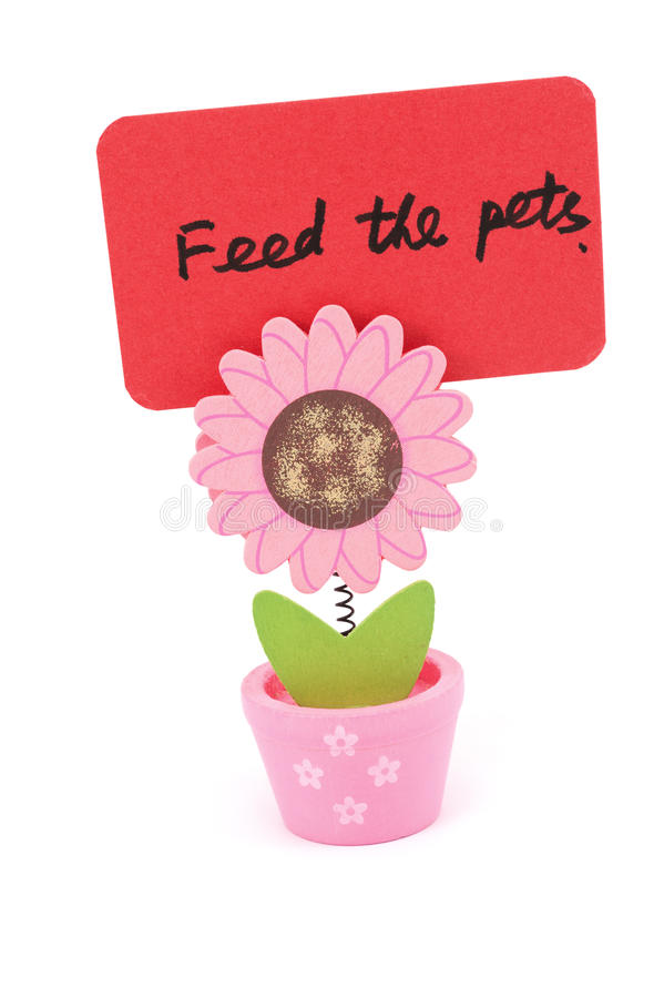 Feed The Pets Stock Image