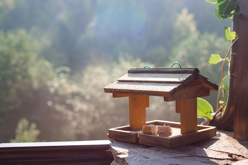 Feeder for birds with pieces of bread. stock images