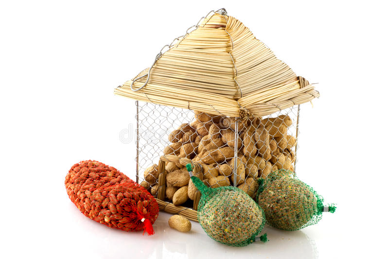 Download Feeding the birds stock image. Image of white, peanuts - 17442917