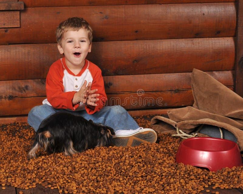 Feeding the Dog stock image