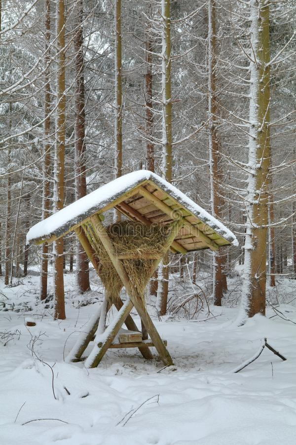 Feeding hay rack in winter forest stock photos