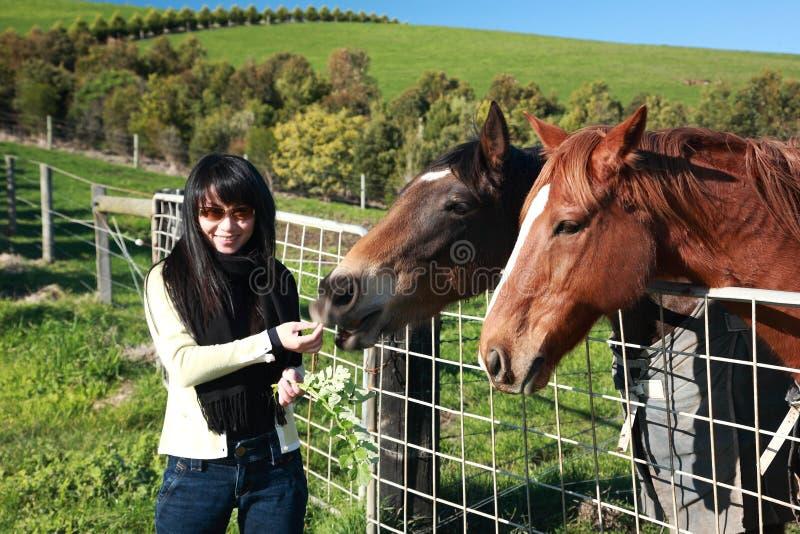 Feeding Horse. Portrait of Smiling Female Feeding Horse With Grass ,Phillip Island,Melbourne,Australia stock image