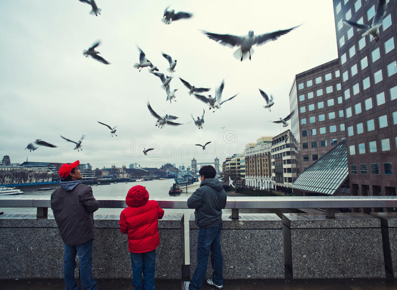 Feeding pigeons in London stock photography