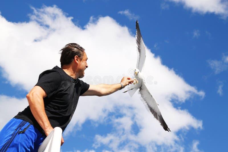 Feeding A Seagull Editorial Photography
