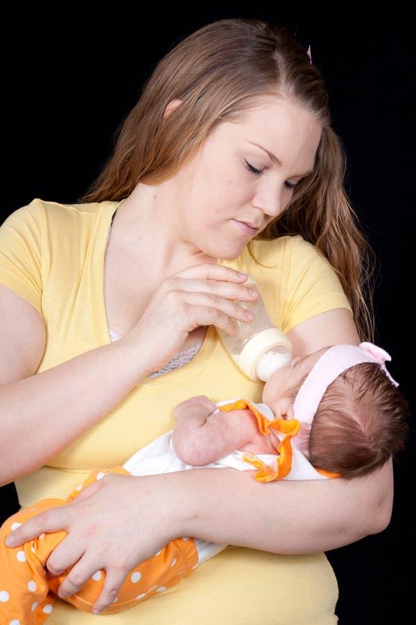 Feeding Time royalty free stock photo