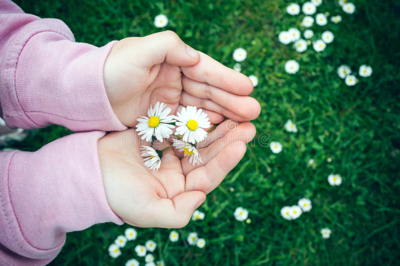 Download Feel spring stock photo. Image of poor, daisy, people - 39500814