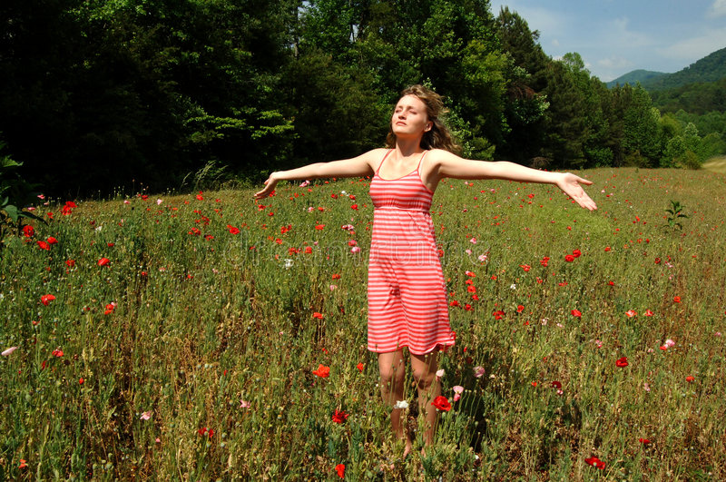 Feel summer sun and breeze. A pretty girl in a summer dress standing in a blooming field of flowers with arms stretched out and eyes closed stock images