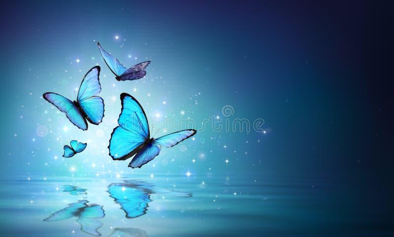 Feenhafte blaue Schmetterlinge auf Wasser stockbilder