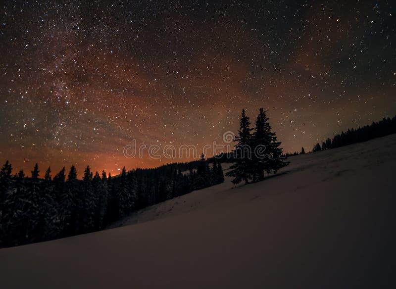 Feenhafter Wald bedeckt mit Schnee in einem Mondlicht Milchstraße in einem sternenklaren Himmel Weihnachten und neues Jahr stockbilder
