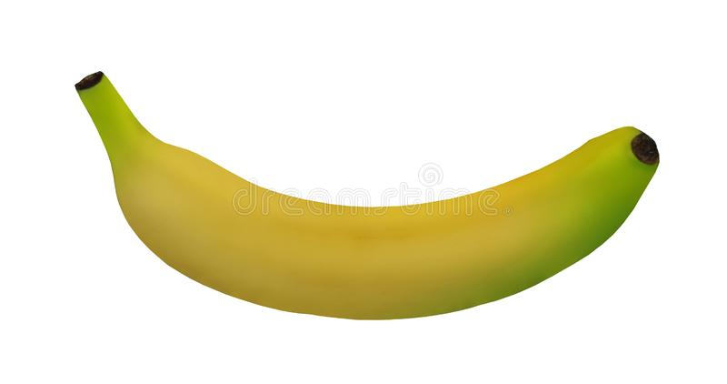 Fresh Banana fruit on white isolated. Feesh banana fruit on white isolated, white background royalty free stock photo