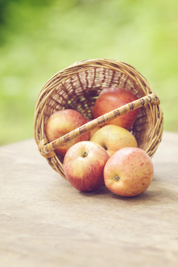 Feestappelen in de mand op oude lijst royalty-vrije stock foto