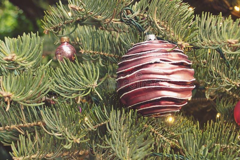 Feestelijk Ornament in Kerstboom royalty-vrije stock foto
