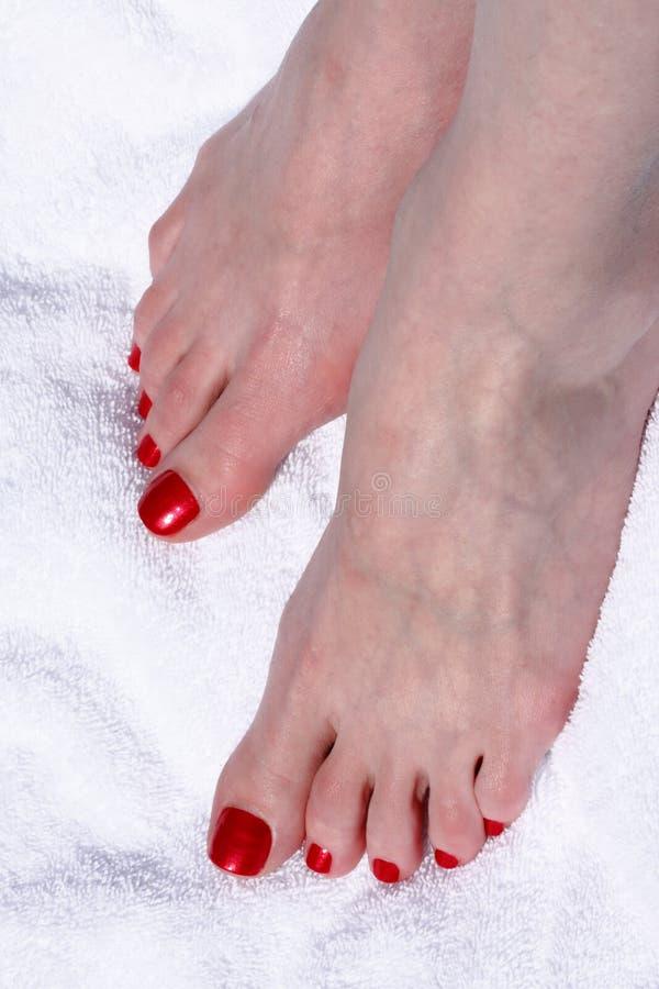 Download Feet stock image. Image of polish, cosmetics, care, girl - 11337951