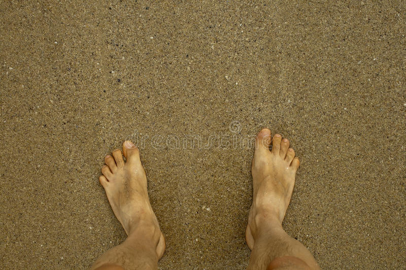 Download Feet on the beach stock photo. Image of feet, legs, outdoor - 90702164