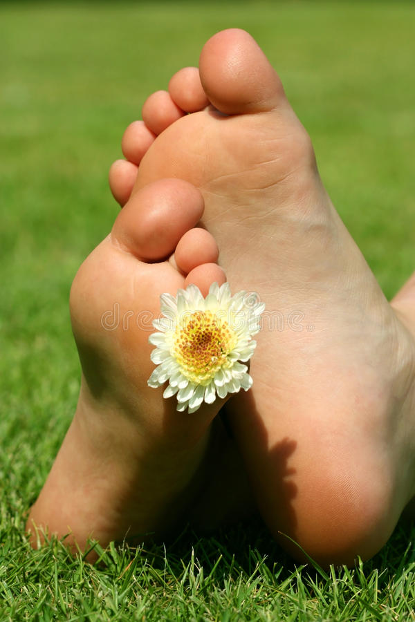Download Feet and the flower stock photo. Image of nature, leisure - 23674778