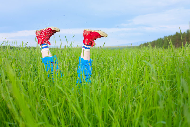 Download Feet In Gym Shoes And Hungry Mosquitoes Stock Photo - Image: 9302868