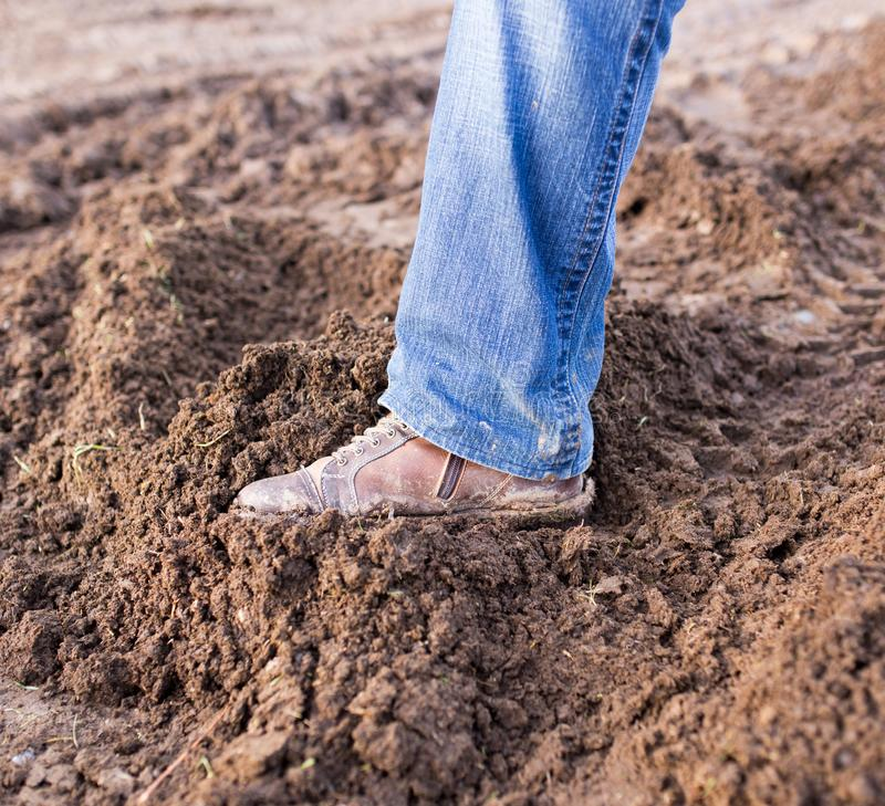 Feet in the mud royalty free stock photography