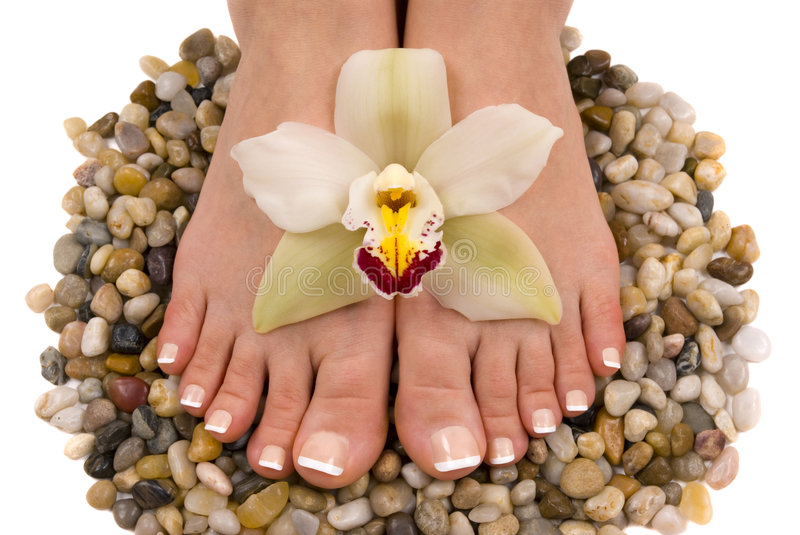 Feet and Orchid royalty free stock photos