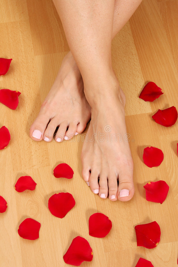 Feet and petals stock photos