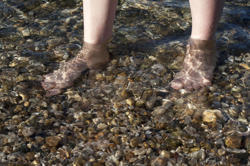 Download Feet in the sea stock image. Image of body, part, foreground - 26855067