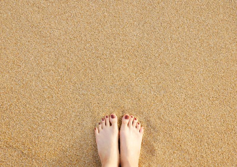 Feet on Sea Sand Beach Background. Top View. Closeup of Barefoot Woman Standing on Golden Sandy Beach in Sunny Summer Day. Selfie stock images