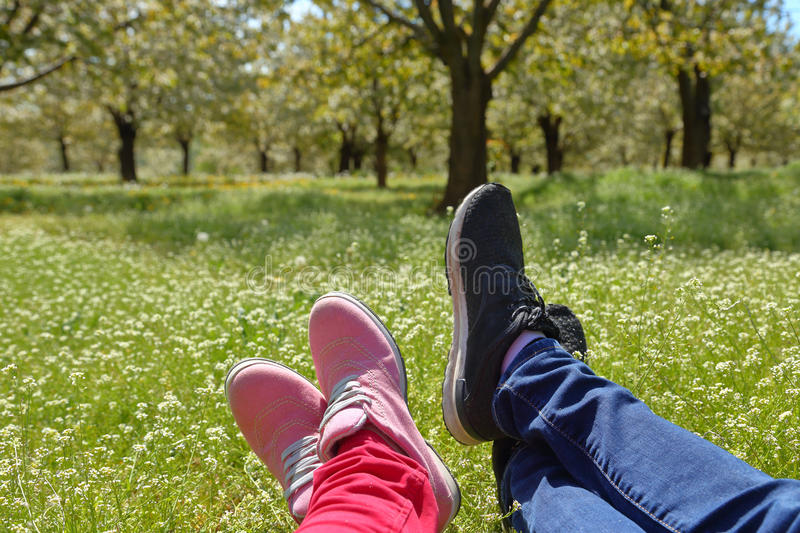 Feet in shoes of a couple on green field. With flowers stock photography