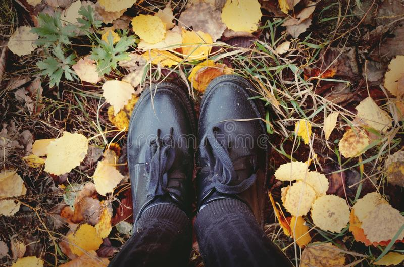 Feet standing on Autumn leaves. royalty free stock photos