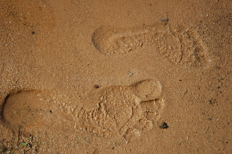 Download Feet steps stock image. Image of explore, water, step, beach - 17333