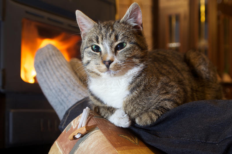 Feet in stockings with cat. By the fireplace stock photo