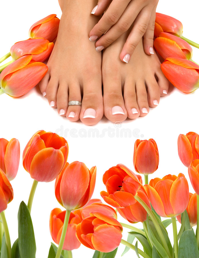 Feet and Tulips. Pampered feet and hands with beautiful tulips stock images