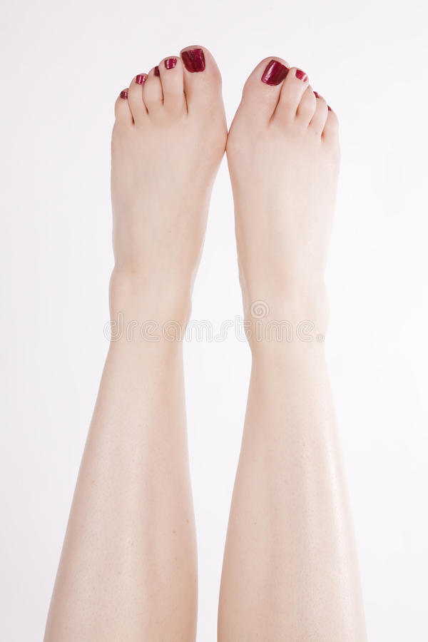 Download Feet up red toes stock photo. Image of adult, young, sleek - 11653364