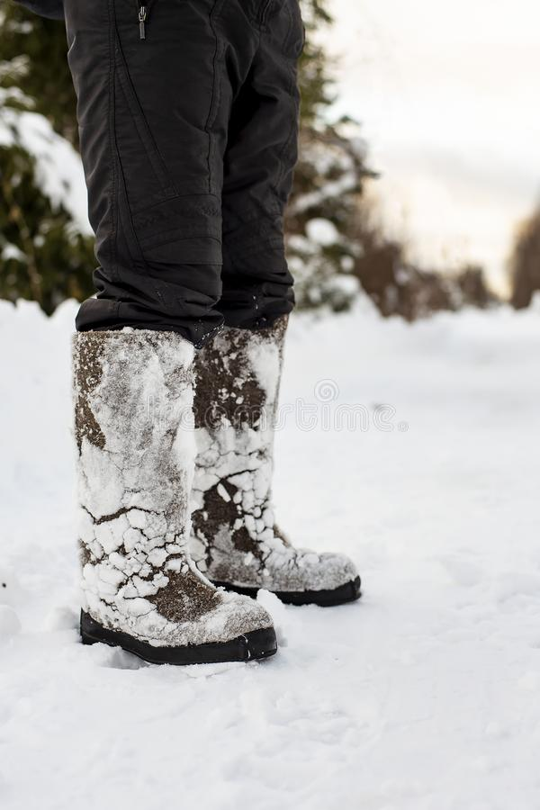 Feet in warm, comfortable felt shoes with snow stuck to them after a walk through the snowdrifts in the forest are on a cleared stock photo