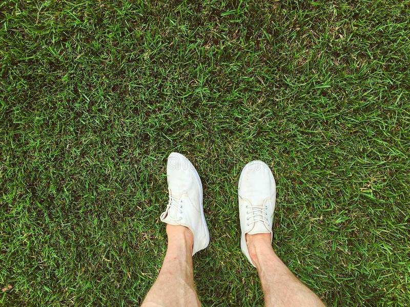 Feet in white sneakers on the grass stock photo