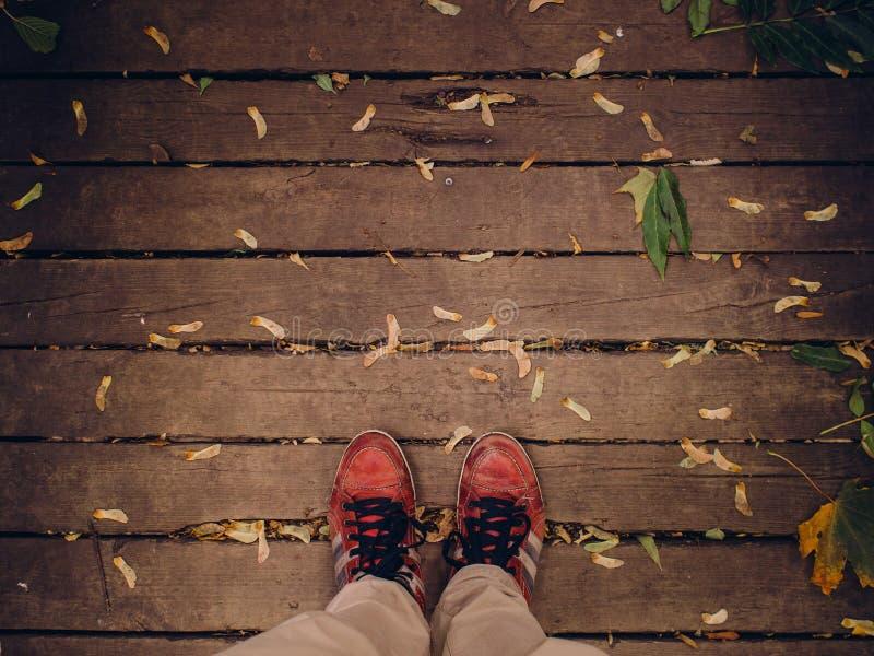 Feet On Wooden Planks Free Public Domain Cc0 Image