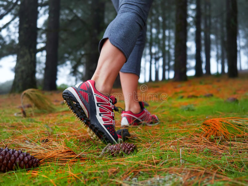 Feet of young woman hiking. Concept of trip and adventure. Feet of young woman hiking in the forest Concept of trip and adventure royalty free stock photography