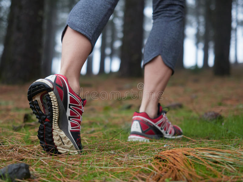 Feet of young woman hikingin the forest stock photography