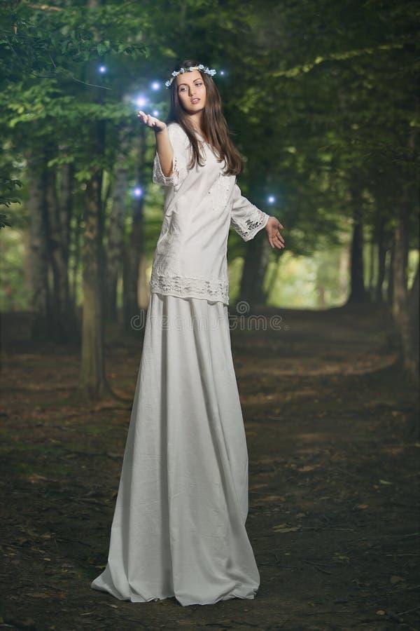 Feevrouw in magisch bos stock foto