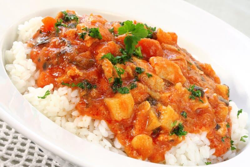 feg curry arkivfoto