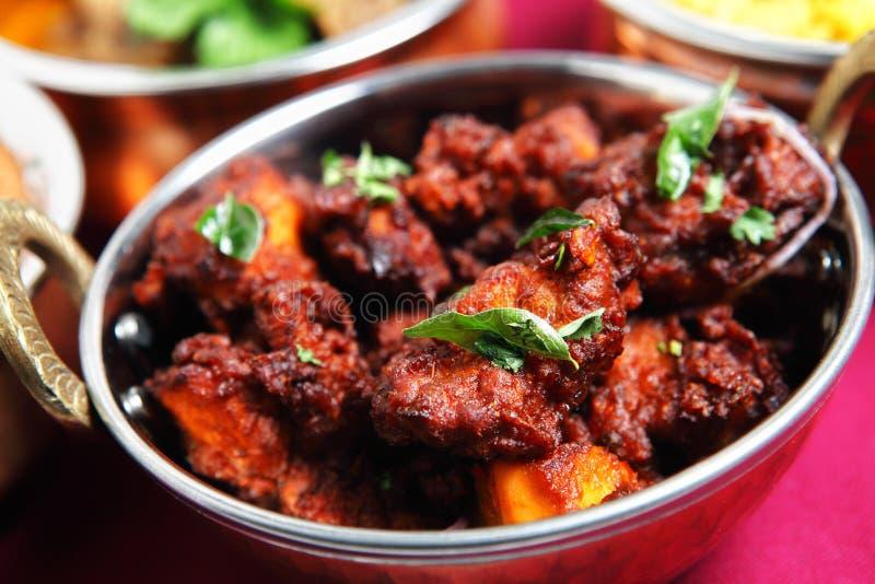feg currysmåfiskkerala meat arkivbilder