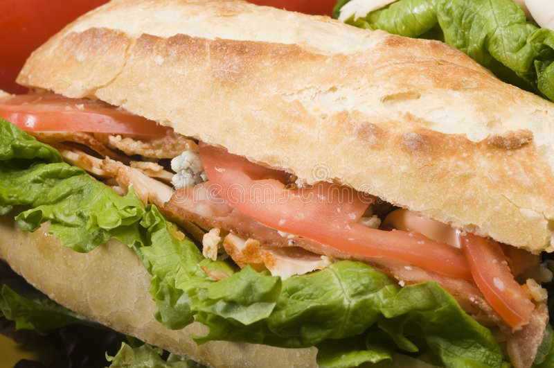 feg gourmet- smörgås royaltyfri foto