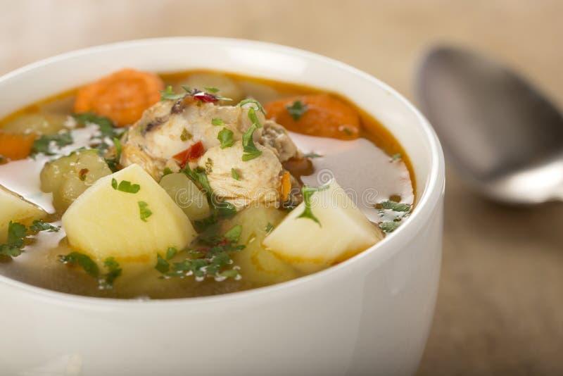 feg hemlagad soup royaltyfria foton