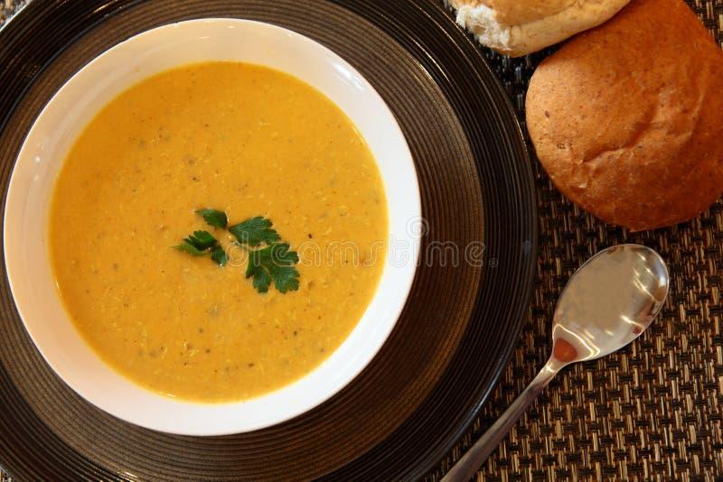 feg indisk soup arkivfoton
