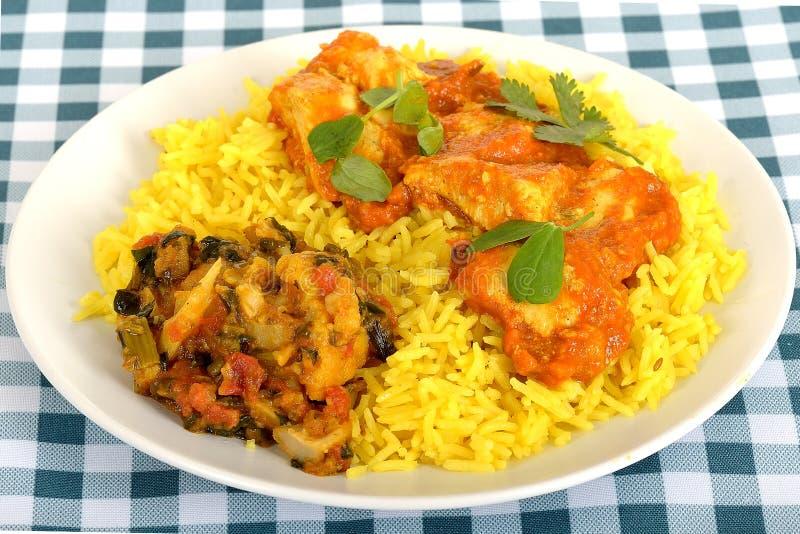 Feg Madras curry på en platta med ris royaltyfria bilder