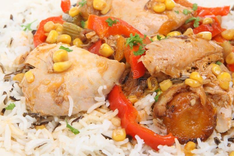 feg rice för casserole arkivfoton