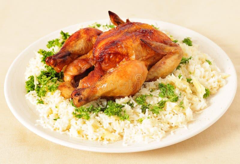 feg sikt för ricesteksida royaltyfri bild