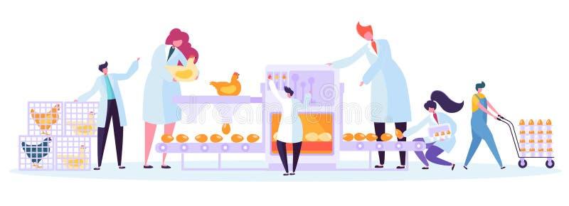 Feg uppsättning för maskin för hönsproduktionfabrik Kommersiellt tecken som gör process för äggmaskineriemballage stock illustrationer