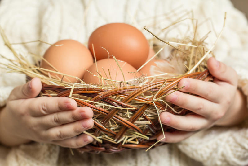 fega ägg för korg arkivbilder