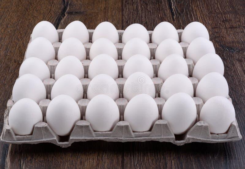 Fega ägg för vit i en papppacke royaltyfri foto