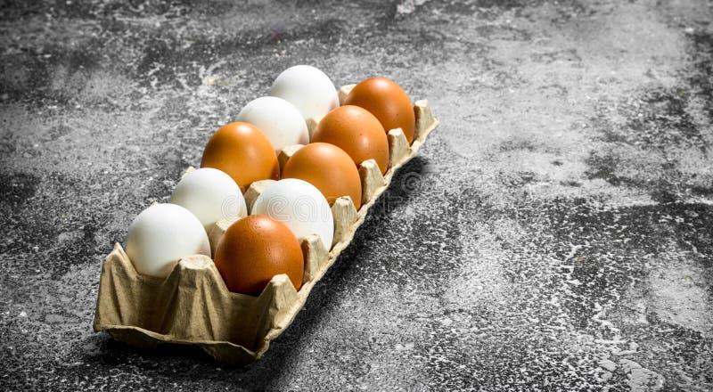 Fega ägg i en kassett royaltyfri bild
